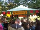 2010 Mittelalterlich Phantasie Spectaculum - Speyer :: 061_mittelalterlich_phantasie_spectaculum_outtake