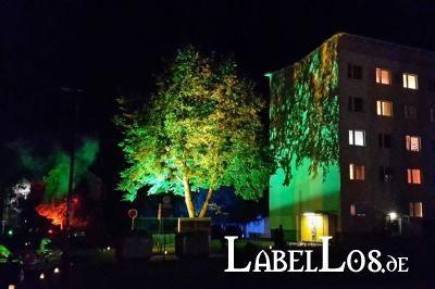 003_campus-noir-2016_campus_stefanie