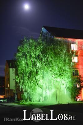 002_campus-noir-2012_outtake_light